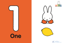 Miffy one